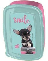 Studio-Pets-Broodtrommel-chihuahua-Smile-Blauw-en-Roze