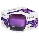 Bolsius-True-Scents-6-Stuks-Geurkaars-in-Glas--Lavendel-5cm-Paars